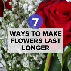 7 Easy Ways To Make Flowers Last Longer #flowers #hacks #romantic #gifts