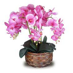 Arranjo de orquideas artificiais