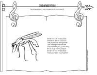 Songs and rhymes - Mosquitoes