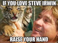 still love steve irwin
