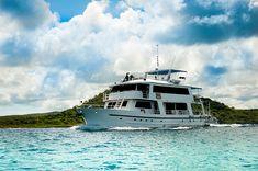 Galapagos Islands, Tour Guide, Ecuador, Html, Boat, Tours, Traveling, Cruises, Guayaquil