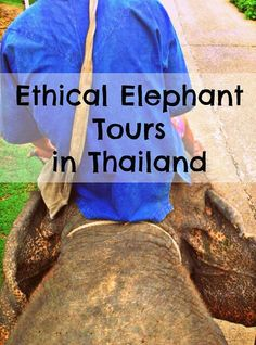 Pai Expert Travel: Responsible Tourism in Northern Thailand - www.fleetinglife.com