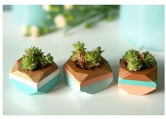 Set of 3 geometric mini planters in blue