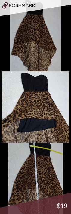 Foreign exchange animal print hi low dress size S Sweetheart cut animal print hi low dress size small strapless back keyhole with elastic strap Foreign Exchange Dresses High Low
