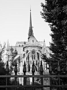 Notre Dame Catherdral / Paris - France