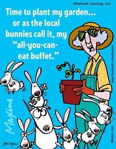 I set out a little Hidden Valley just to be a good hostess. - Maxine Humor - Maxine Humor meme - - I set out a little Hidden Valley just to be a good hostess. The post I set out a little Hidden Valley just to be a good hostess. appeared first on Gag Dad. Gardening Memes, Garden Quotes, Garden Sayings, Funny Bunnies, Getting Old, Laugh Out Loud, Make Me Smile, Love Her, Funny Quotes