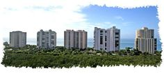 Naples Florida Real Estate Smart Girl! - Pelican Bay High Rise Update