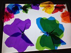 Resultado de imagen para butterfly light table