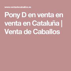 Pony D en venta en venta en Cataluña | Venta de Caballos