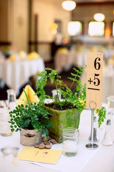 What an #adorable #weddingidea for #mathlovers! #Math for the #tablenumbers. #6 + #5 = #11. ::Emily + Denise's gloriously golden wedding in Oregon:: #angelfern #centerpieceplants #numbers #centerpieceideas #place #weddingreceptionideas