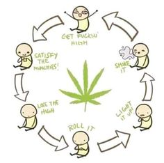 weed pictures and jokes :: drugs / funny pictures & best jokes: comics, images, video, humor, gif animation - i lol'd Stoner Quotes, Stoner Humor, Stoner Art, Weed Humor, 420 Memes, Weed Pictures, Backgrounds, Comics, Smoking Weed