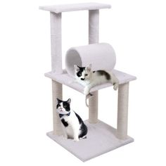 Kitty Tunnel Tower