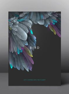Bird - Let's appreciate the planet - Graphic Poster Series by jDstyle