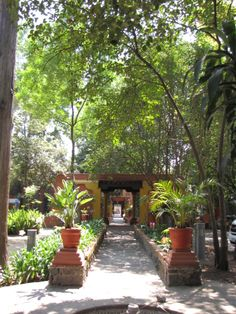 Jardín sonoro.