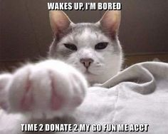 TIME 2 DONATE