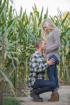 Fall baby announcement, pregnancy announcement, corn field photography, Kara Additon Photography