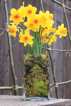 How to make a daffodil centerpiece in under 10 minutes.