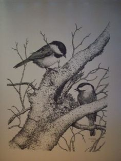 Gene Matras - Chicadee Pen & Ink Print I may have to consider buying this, but I'm not sure where I have room to hang it!