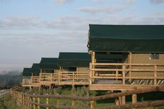 Livingstone Lodge, Port Lympne in Kent | Cool Places UK