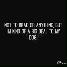 I'm kind of a big deal!!
