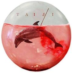 Stop buying tickets to abusement parks...this will stop the slaughter in Taiji, Japan