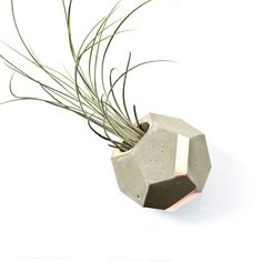 Concrete and Copper Dodecahedron Planter by PASiNGA