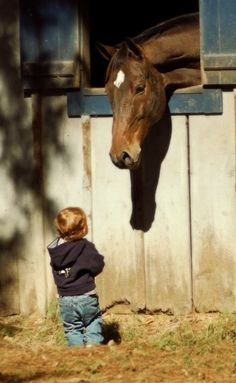 ohhibelieveinyesterday:  azm150:  (c) Burgess photographyhttp://burgessphotography.net/ 3 so cute   I want a son  a horse just like this when I'm older