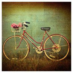 Bicicletas bicicleta fotografía fotografía de arte por AliciaBock