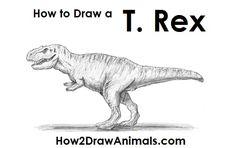30 Best Dinosaurs Images Dinosaurs Dinosaur Drawing Dinosaur Crafts