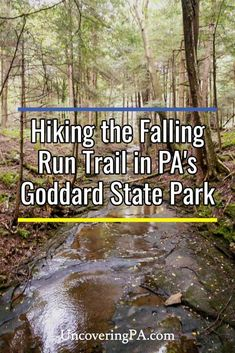 The Falling Run Nature Trail in Maurice K. Goddard State Park in Northwestern Pennsylvania is a great hike for the whole family. It passes along small waterfalls and through a beautiful woodland. Erie County, Great Lakes Region, Small Waterfall, Covered Bridges, Hiking Trails, Travel Around, Waterfalls, Pennsylvania, State Parks