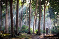 Rajan, Andaman Islands, 60 years old