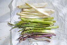 """Sie sind bekannt als """"königliches Gemüse"""", sind in verschiedenen Farben erhältlich und haben eine Form, wie von keinem anderen Gemüse bekannt. Sie gelten als Gesundheitsbooster und werden im Frühjahr von allen Leuten begehrt. Ob Geniesser, Feinschmecker, Figur- oder Gesundheitsbewusster, alle warten sehnlichst darauf bis ihre Spitzen aus dem Boden ragen und sie uns ihre kleinen schön geformten Köpfchen entgegenstrecken. Genau! Ich meine den Spargel, welcher im Frühjahr immer wieder hilft…"""