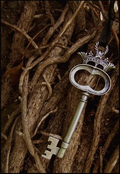 Key to a magical place?