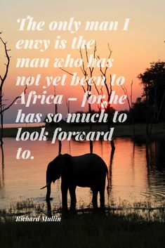 30 #Safari #Quotes to #Inspire You About #Africa. Looking for a new and exciting #adventure? These 30 famous quotes and safari #sayings will literally make you fall in #love with Africa! 😉 This is a very personal list. Some of these safari quotes first inspired me to #explore Africa, many many moons ago. These safari quotes continue to inspire me. #quote #travel #Mullin #RichardMullin #elephant