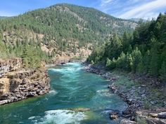 While out-of-state tourists tend to flock to our well-known spots like Glacier National Park, this area remains a beloved local favorite. Printable Animal Pictures, Printable Animals, Flocking, Montana, National Parks, River, Outdoor, Outdoors, Flathead Lake Montana