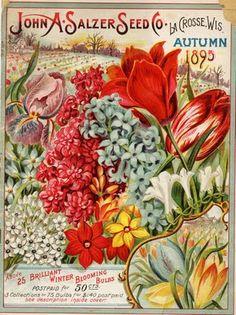 1895 Seed Catalog