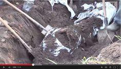 Mass Grave Reveals Bodies of Slain Church Leaders in Eastern Ukraine