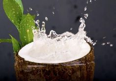 Way To Use of Coconut Water For Weight Loss