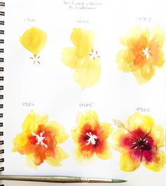 artbybianca🌺 TUTORIAL! 🌺 Today I decided to share a step by step tutorial of a yellow and red hibiscus with you guys! 😀 If you try this technique tag #biancasartchallenge so I can see