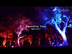 In Japan, the Trees Are Alive with Lights and Music | The Creators Project