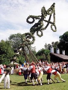 Midsummer Festival~Raising the Majstang-May Pole~Sweden