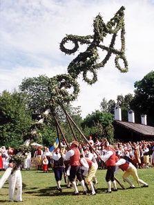 Midsummer Festival~Raising the Majstang-May Pole~Sweden