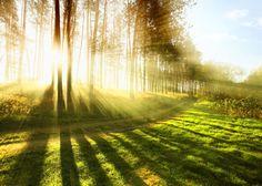 One benefit of early morning running - beautiful sunrises!