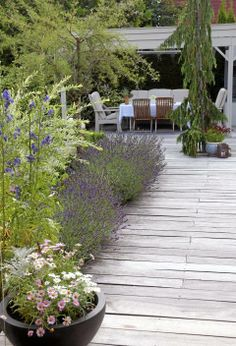 Drømmehagen er spekket med gode tips Dream Garden, Home And Garden, Outdoor Spaces, Outdoor Living, Porches, Patio Dining, Outdoor Projects, Beautiful Gardens, Garden Landscaping
