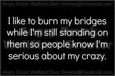 I like to burn my bridges while I'm still standing on them so people know I'm serious about my crazy. THey I don't think anyone doubts my Crazy Quotes To Live By, Me Quotes, Funny Quotes, Hater Quotes, Girly Quotes, Thats The Way, That Way, Memes, Twisted Humor
