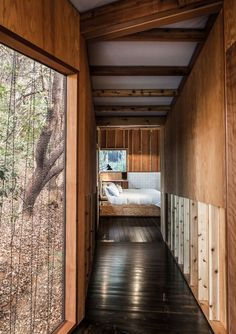 Forest House By Envelope A   D - Photo 4 of 8 - Dwell