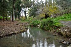 מעיינות בעמק יזרעאל
