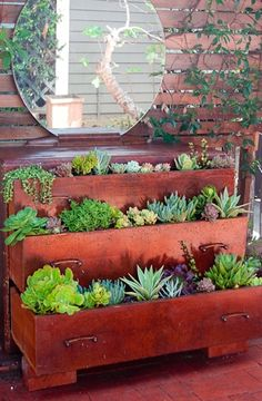 Another wonderful way to grow on limited land space. I firmly believe if you can't plant in the yard, plant where you can.