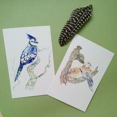card Birds Watercolor illustration art Artist: Maryna Kovalchuk  instagram.com/dyvokolir