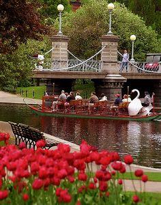 "Boston - Public Gardens ""Swan Boat & Tulips"" | Flickr - Photo Sharing!"
